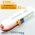 DUALSKY リポバッテリー 18.5V5200mAh 25C (XP52005ECO)