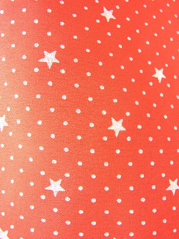 ヨーロッパ古着 ロンドン買い付け 70年代製 レッド X ホワイト 水玉・星柄 ヴィンテージ ワンピース 21BS206