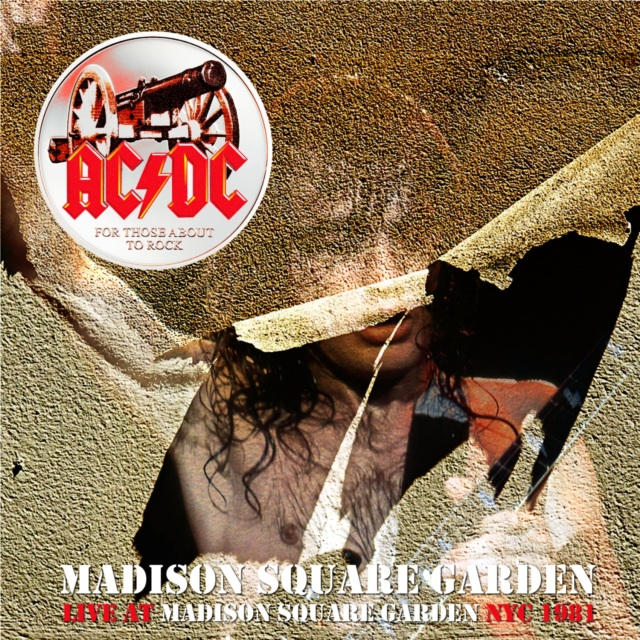 コレクターズCD AC/DC - Back In Black European Tour 1981