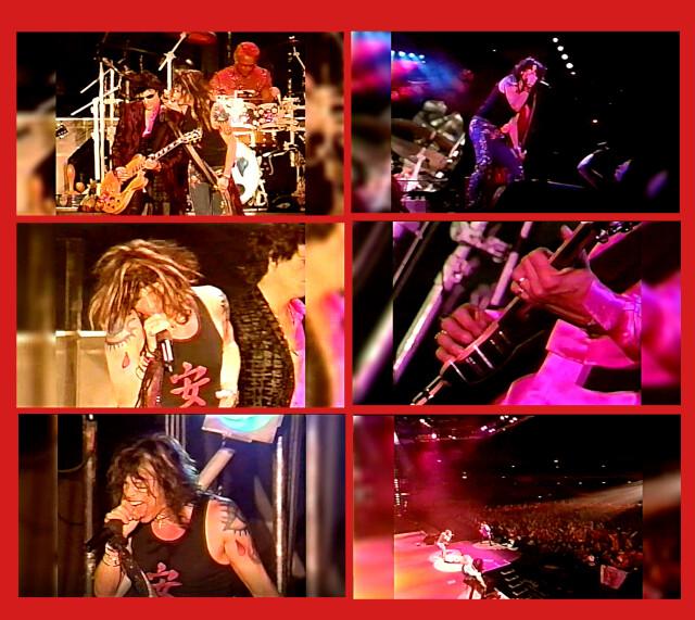 コレクターズDVD  Aerosmith - Roar Of The Dragon Tour 1999-2000