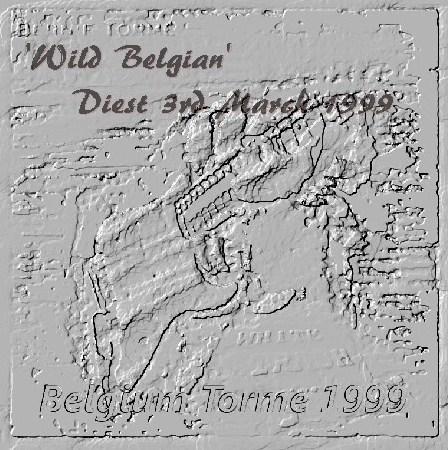 Bernie Torme Ue Tour 99 /Diest Belgium 1999.3.3