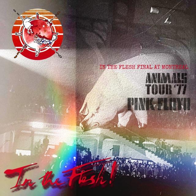 コレクターズCD Pink Floyd - In the Flesh Tour 1977 Final
