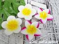 【アジアン】◆ウッドプルメリア5個SET 22018002