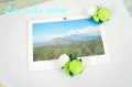 【ハワイアン】◆小さなココナッツのマグネット402938