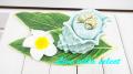 【マリン】◆シェルの陶器小物入れ S3-303335