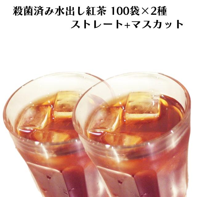 ロンドンティールームの殺菌済み水出し紅茶 ストレート・マスカットセット(100ティーバッグ入×2種)【アイスティー】【殺菌済み】【角型ティーバッグ】