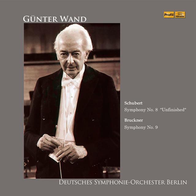 【LP レコード】 ヴァントのブルックナー/交響曲第9番ほか 1993年ベルリン・ライヴ <完全限定生産盤/初LP化> PHLP039/040 2LP
