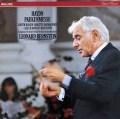 バーンスタインのハイドン/ミサ曲第7番「戦時のミサ」  蘭PHILIPS 3008 LP レコード