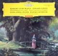【赤ステレオ】アンダ&クーベリックのグリーグ&シューマン/ピアノ協奏曲集 独DGG 3011 LP レコード