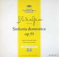 コンヴィチュニーのR.シュトラウス/家庭交響曲  独DGG 3020 LP レコード