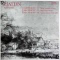 リュビモフ、カガン&グートマンのハイドン/ピアノ三重奏曲集  独ETERNA 3027 LP レコード