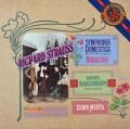 メータのR.シュトラウス/「家庭交響曲」   蘭CBS 3030 LP レコード