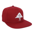 LEGACY TREE SNAPBACK / RED