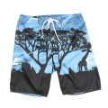 "SUNSET BOARDSHORT ""TURKISH SEA"""