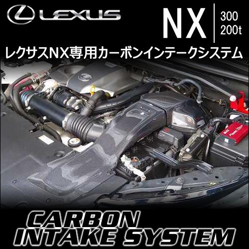 レクサス NX専用 カーボンインテークシステム(ブリッツ)