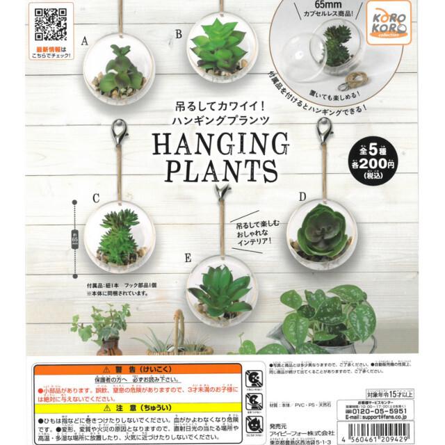 【ライブガチャ用】吊るしてカワイイ!ハンギングプランツ HANGING PLANTS