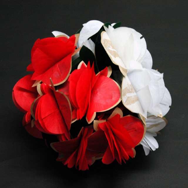 P5233 楠玉(紅白)