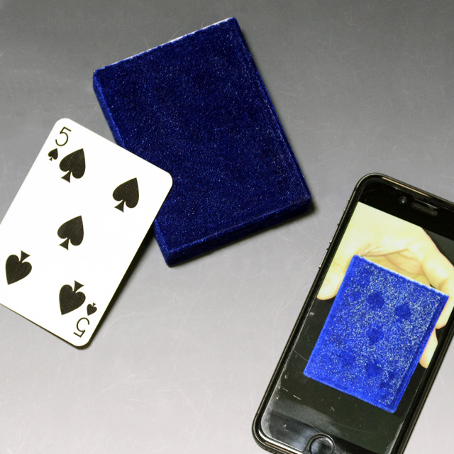 X5201 ゴーストカードケース