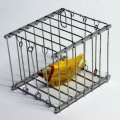 H5251 消える鳥篭