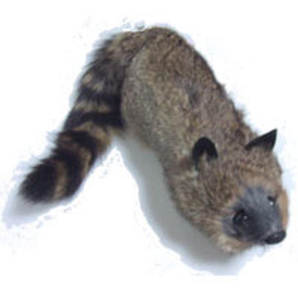 ロッキー・ラクーン (Rocky Raccoon)