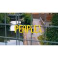 パープレックス (Perplex)