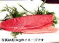生まぐろロイン赤身2kg以上(1kg単位)