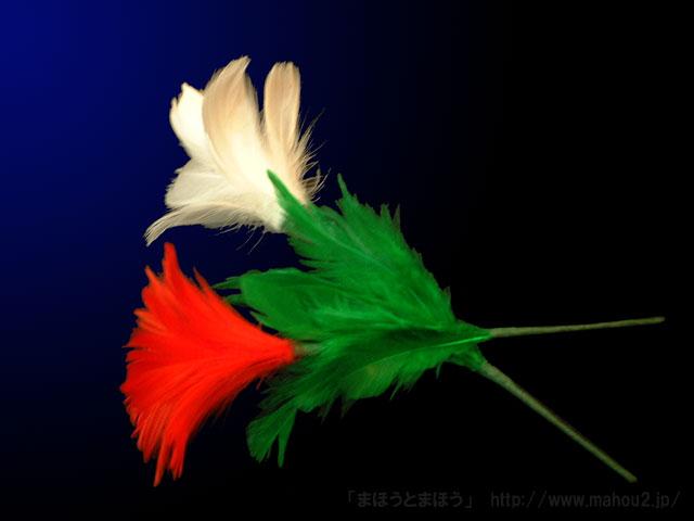 色変わりの花