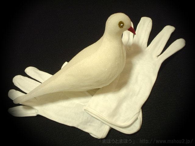 鳩になる手袋 (グローブトゥダブ)