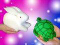 変身スポンジ [ウサギとカメ セット]