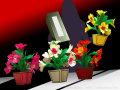 ハイパー花鉢