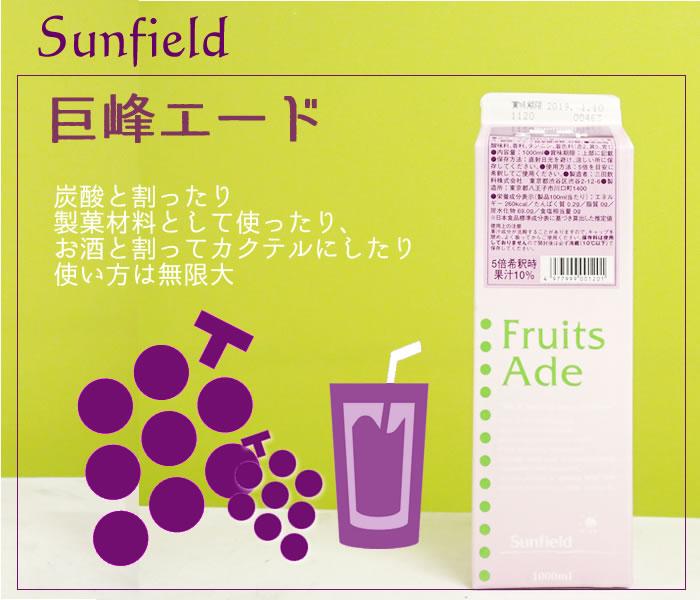 三田飲料 巨峰エード 1000ML 紙パック