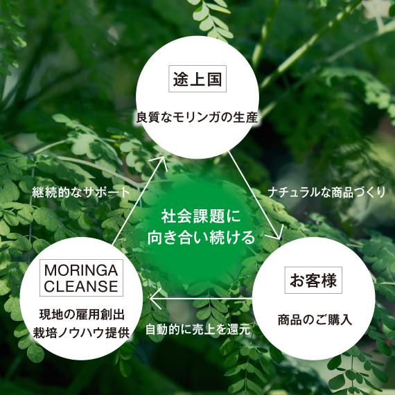 MRC_570_570_5.jpg