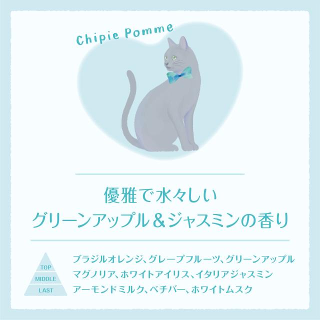 chaton_EC_CP_570_570.jpg