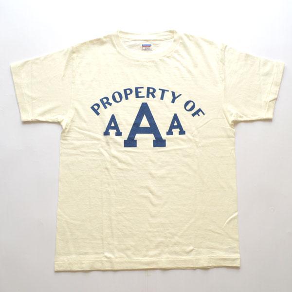 ダブルワークス DUBBLE WORKS ラフィ天竺 プリントTシャツ PROPERTY Lot.33005 WHITE