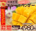 沖縄マンゴー1kg
