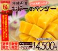 沖縄マンゴー4kg