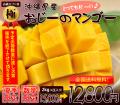 【極】最高級の沖縄マンゴー2kg贈答用(お中元・ギフト)4玉入り【送料無料】