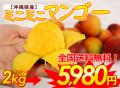 沖縄産ミニマンゴー(ご家庭用)2kg【送料無料】