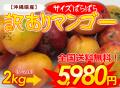 沖縄産サイズばらばら訳ありマンゴー(ご家庭用)2kg【送料無料】