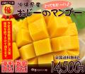 沖縄県産ギフト用マンゴー4kg