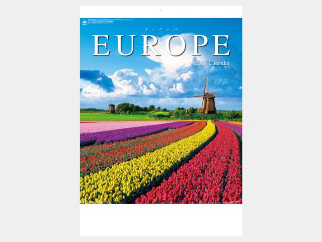 ヨーロッパ NK28 カレンダー印刷 2020年度