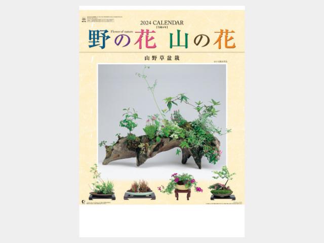 野の花・山の花(山野草盆栽集) NK46 カレンダー印刷 2020年度
