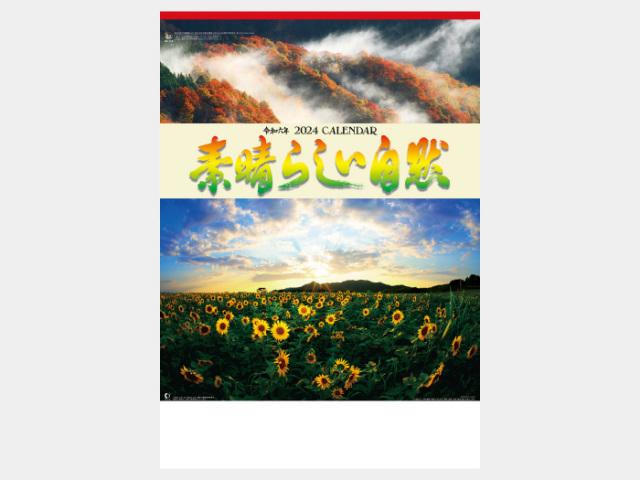 素晴らしい自然(シャッターメモ付) NK116カレンダー印刷 2019年度