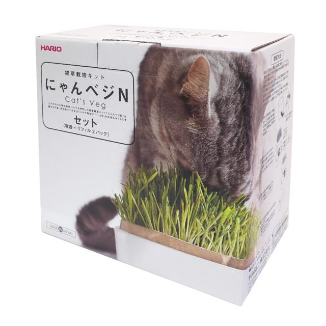 猫草栽培キット にゃんベジセット エン麦 HARIO