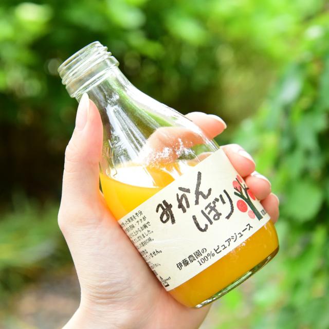 みかん100%ストレートジュース(180ml) 無添加 和歌山県伊藤農園