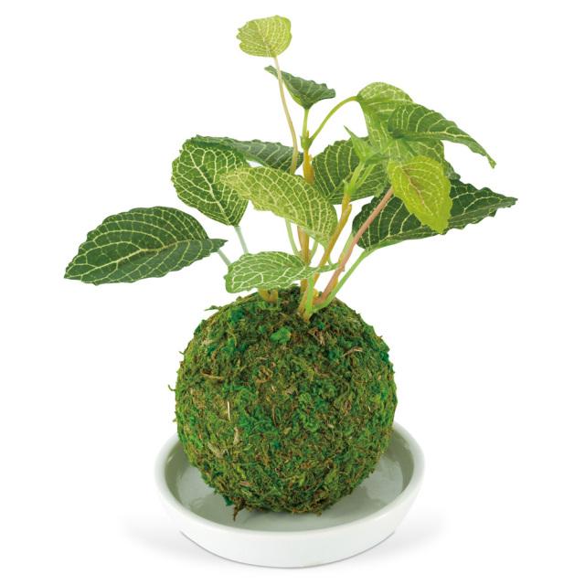 和盆栽 消臭アーティフィシャルグリーン クワ 空気清浄 フェイク KISHIMA KH-61060