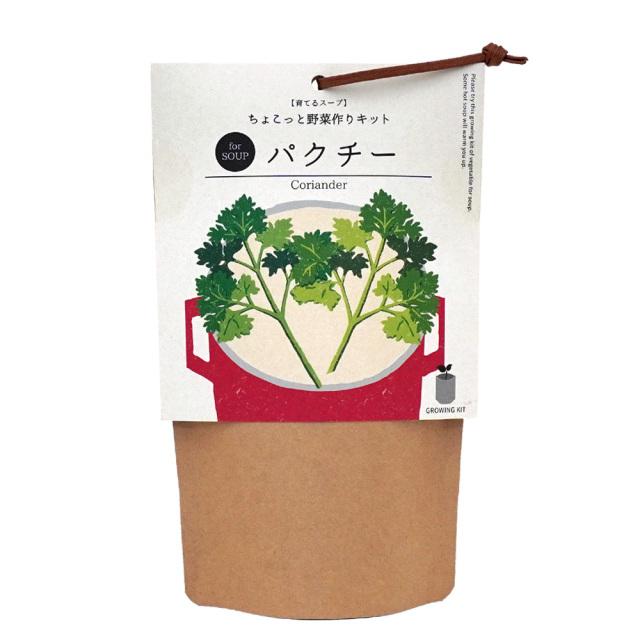 育てるスープ ちょこっと野菜作り栽培キット パクチー コリアンダー 聖新陶芸