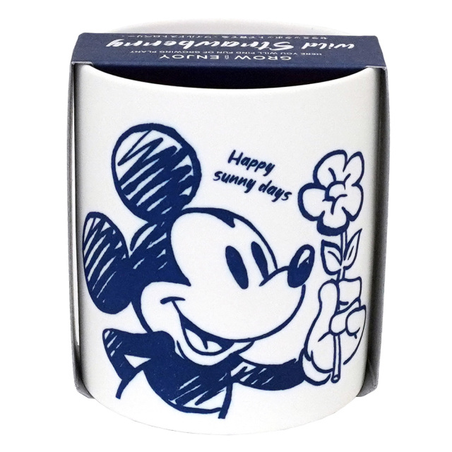 GrowCanister グローキャニスター ミッキーマウス 栽培キット ワイルドストロベリー 陶器製鉢 聖新陶芸 裏面