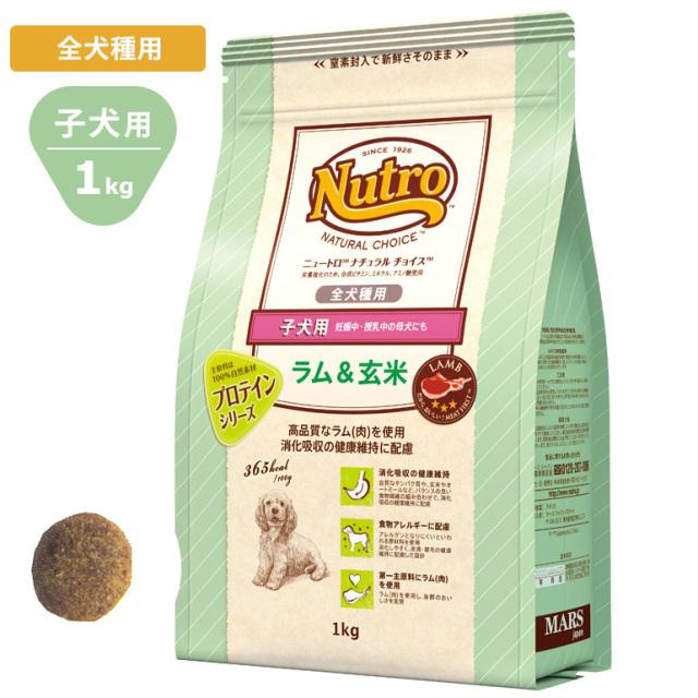 Nutroナチュラルチョイス ラム&玄米1kg 全犬種用 子犬用 ドッグフード ニュートロ
