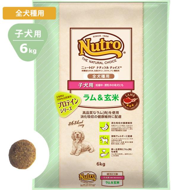 Nutroナチュラルチョイス ラム&玄米6kg 全犬種用 子犬用 ドッグフード ニュートロ